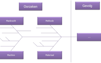 Continu verbeteren: Visgraatdiagram